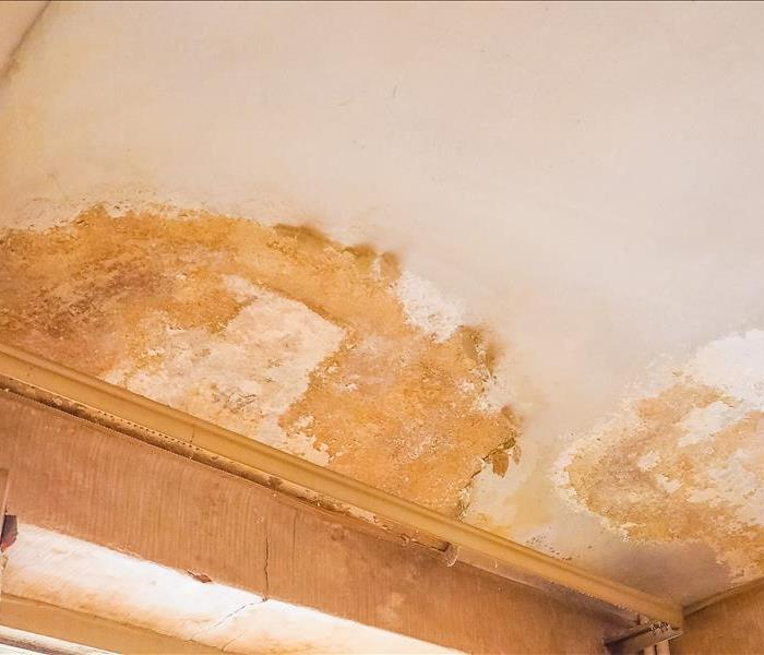 Water Damage Water Removal Professionals Save You Stress and Money