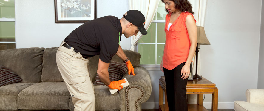 Richmond Hill, GA carpet upholstery cleaning